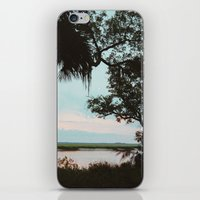 Cumberland Island iPhone & iPod Skin