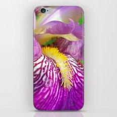 lily macro III iPhone & iPod Skin