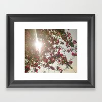 Bright Morning Framed Art Print