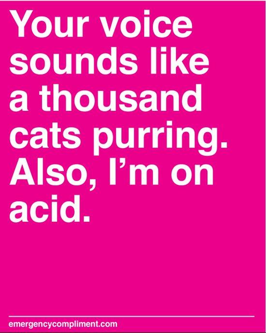A Thousand Cats Canvas Print