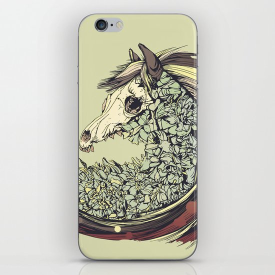 Beautiful Horse Old iPhone & iPod Skin