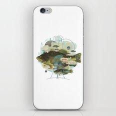 Cardume iPhone & iPod Skin