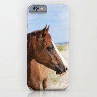 Horse ii iPhone 6 Slim Case
