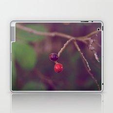Vintage Nature Laptop & iPad Skin