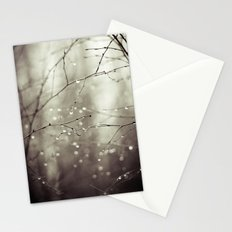 Colorless Stationery Cards