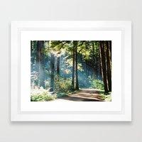 Campsite trails  Framed Art Print
