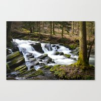 Trees and Water Canvas Print