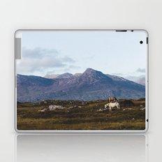 Connemara  - Horse and Mountains Laptop & iPad Skin