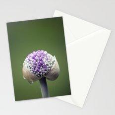 Starting Allium Stationery Cards