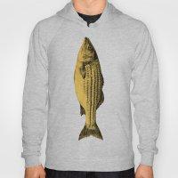 A Fish Hoody