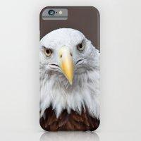 Bald Eagle Face iPhone 6 Slim Case