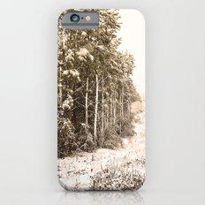 Winter Roadside Slim Case iPhone 6s