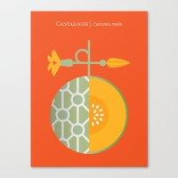 Fruit: Cantaloupe Canvas Print