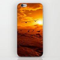The Pilgrimage iPhone & iPod Skin