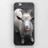 Chronos iPhone & iPod Skin