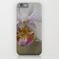 iPhone & iPod Case featuring Orchid by Mary Kilbreath