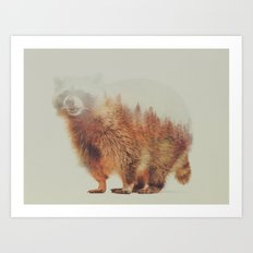 Norwegian Woods: The Raccoon Art Print