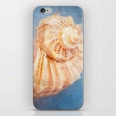 Seashell iPhone & iPod Skin