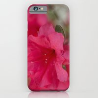 iPhone & iPod Case featuring Pink Azalea  by Rick Kirby