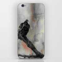 Perched Vulture iPhone & iPod Skin