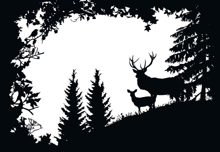 stag and deer in the forest art print by laura barrett