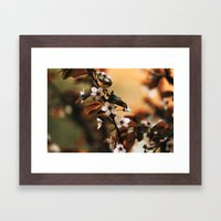 Cherry Blossom 3 Framed Art Print