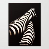 Zebra Gams Canvas Print