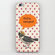 Hola! iPhone & iPod Skin