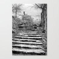 Dovedale Steps Canvas Print