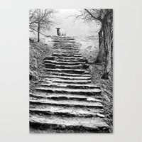 Dovedale Steps Canvas Print