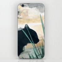 Skelly Cat In The Grass iPhone & iPod Skin