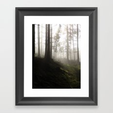 2004 - Serial Killers II - Nature (High Res) Framed Art Print
