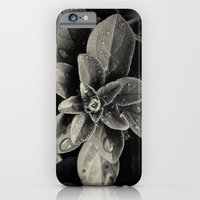 iPhone & iPod Case featuring Rainy Leaves  by Melissa Batchelder Photography