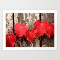 Red Ivy Art Print