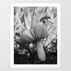 mushroom 2016 III Art Print