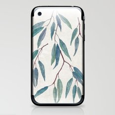 Eucalyptus leaves iPhone & iPod Skin