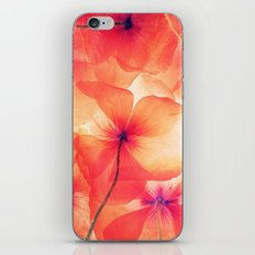 Photo flower iPhone & iPod Skin