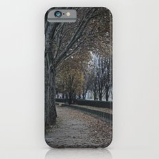 Painting or Photo?? iPhone 6 Slim Case