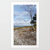 SLIVER SANDS BEACH Art Print