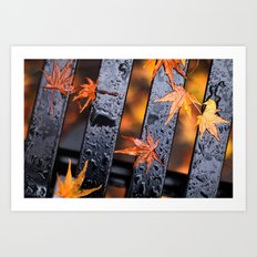 Leaves on a Bench Art Print