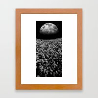 Points Of View Framed Art Print