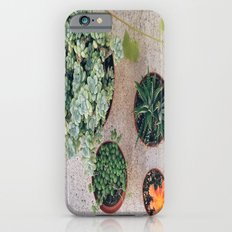 Drought Friendly Plants Slim Case iPhone 6s