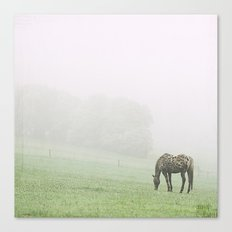 Leopard in the mist.  Canvas Print