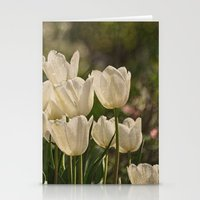 Last Year at the Arboretum Stationery Cards