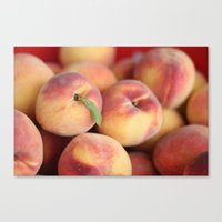 Peaches.  Canvas Print