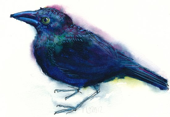 grackle Art Print