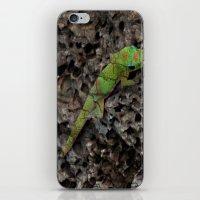 Gecko iPhone & iPod Skin