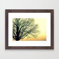 Foggy Morning 3 Framed Art Print