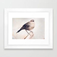 Little Capitola Bird Framed Art Print