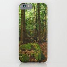 Pathfinder III iPhone 6s Slim Case